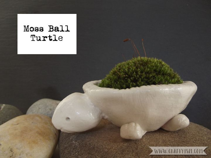 How-to Tutorial Moss Ball Turtle